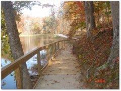 pond-photo.1-300x226.jpg